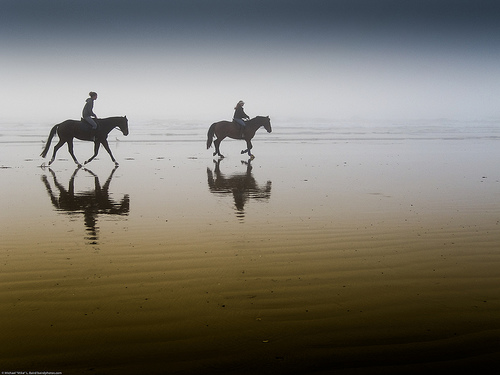 Two equestrian riders, girls on horseback, in low tide reflections
