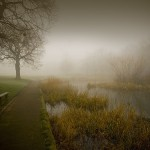 21 Smart Uses of Fog to Create Atmospheric Photos
