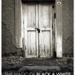 The Magic of Black and White, Part 2 Reviewed