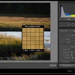 How to Adjust Your White Balance in Adobe Lightroom