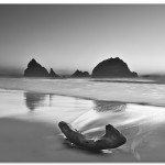 17 Striking Black and White Photos at the Beach