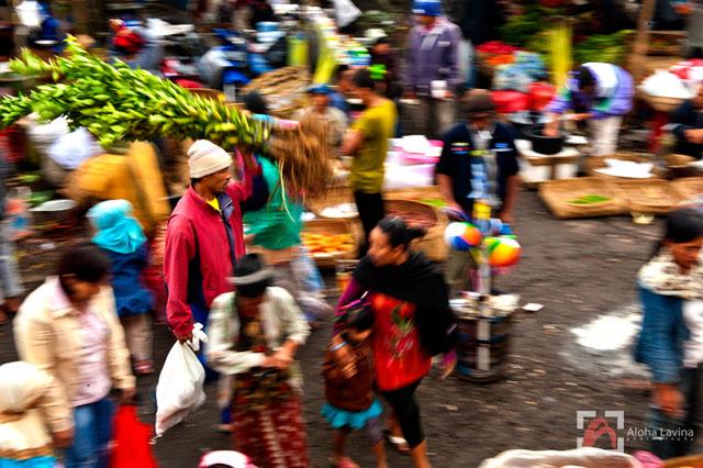 Balinese market motion copyright Aloha Lavina