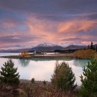 Photo Location Guide: Lake Tekapo, New Zealand