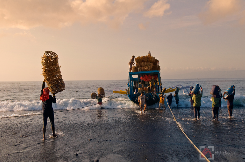 Balinese workers load a boat in the early morning light copyright Aloha Lavina