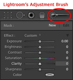 Lightroom Adjustment Brush Tool