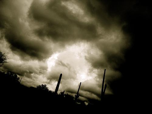 http://www.lightstalking.com/wp-content/uploads/2011/09/2083963918_3a3b5e6bae.jpg