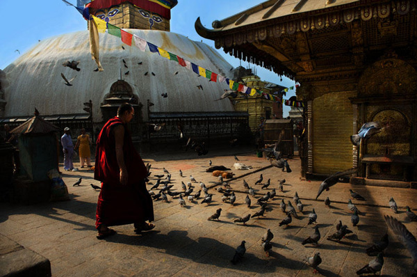 Monk and birds at stupa, Nepal. Copyright Aloha Lavina.