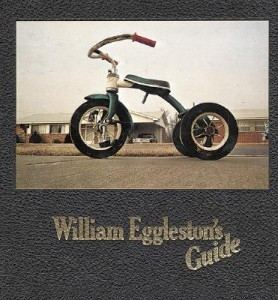 Guide, William Eggleston
