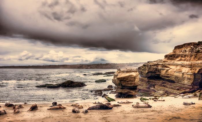 La Jolla Coastline North