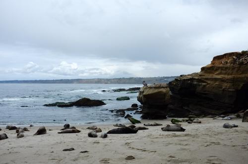 La Jolla Coastline Single Exposure