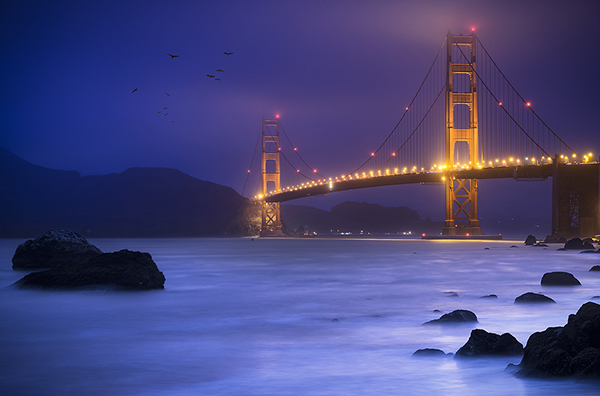 golden gate bridge water article