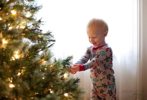 Backlit Christmas Tree Portrait