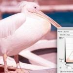 Practical Tips to Better Understand Color Control in Post Production