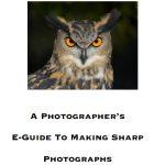 scott bourne making sharp photographs