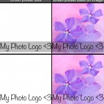 Photoshop Tutorial: How to Create a Brush Preset for Watermarking Your Images