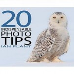 20indespensible_photo_tips
