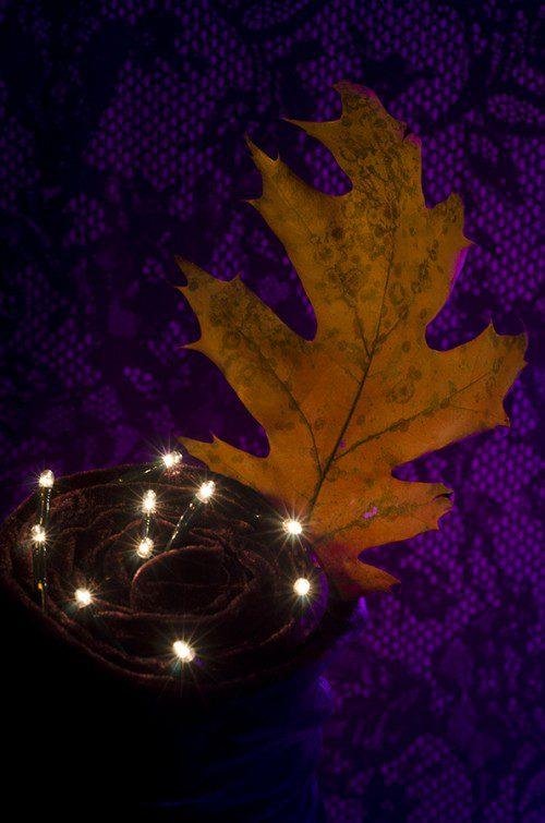 """Spooky Thursday Christmas"" Photo by Rebekah Nemethy"