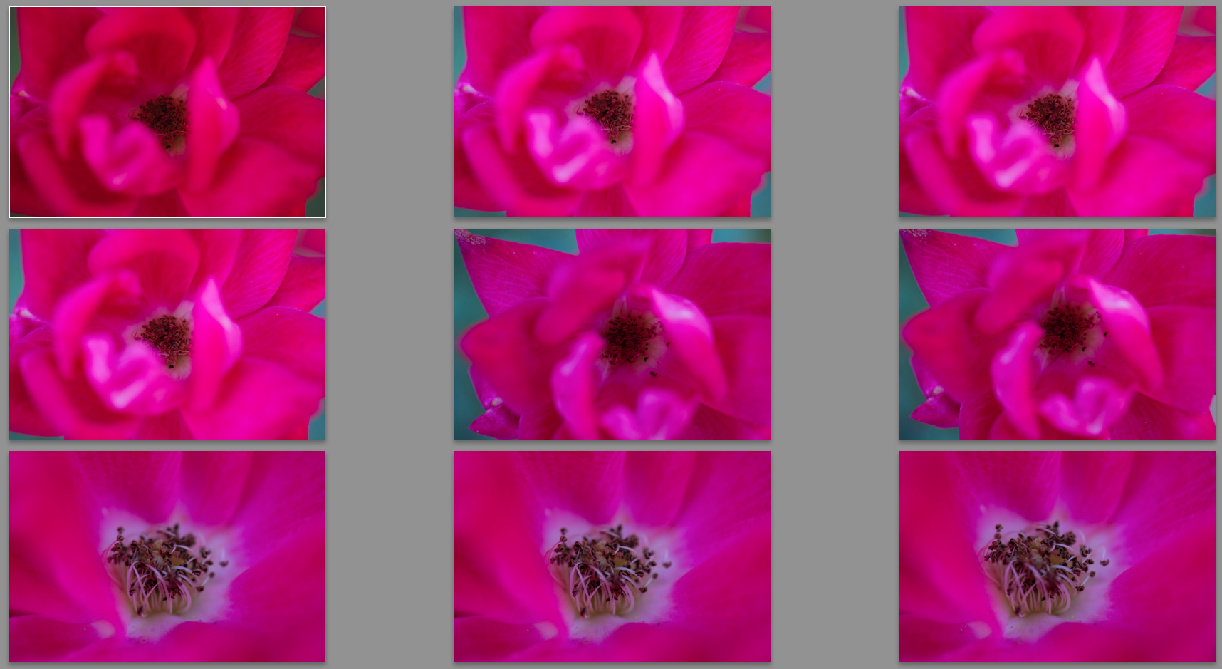 5 Little Known Lightroom Tools That Will Make Your Photos Better