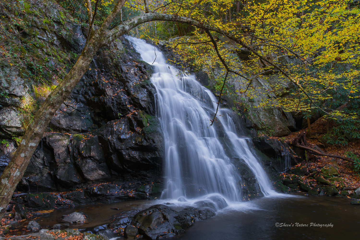 Waterfall in Autumn by ©Sheen's Nature Photography