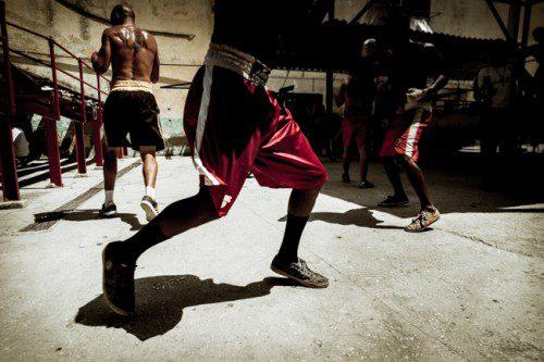 Three boxers in Havana