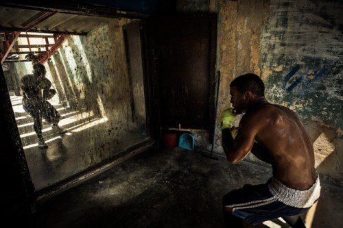 Boxer training in Havana