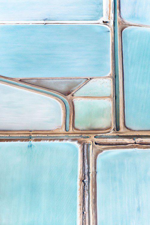 Blue-Fields-No-4-