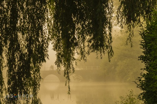 A golden dawn on Minnewater in Bruges