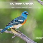 Photography Destination- Southern Arizona