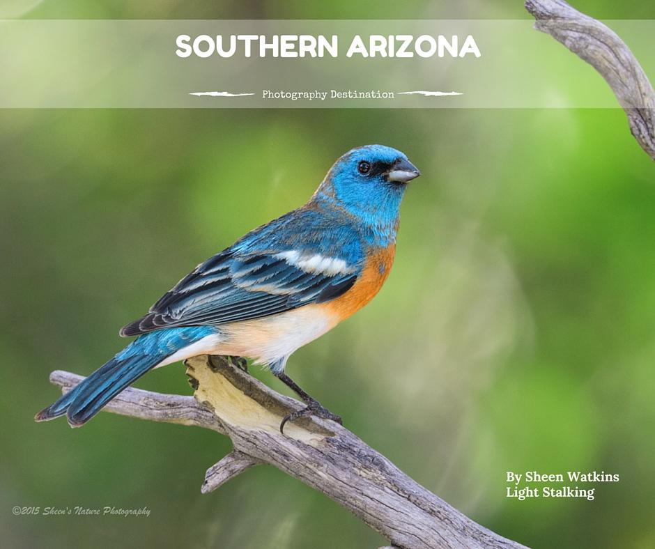 Photography Destination- Southern Arizona
