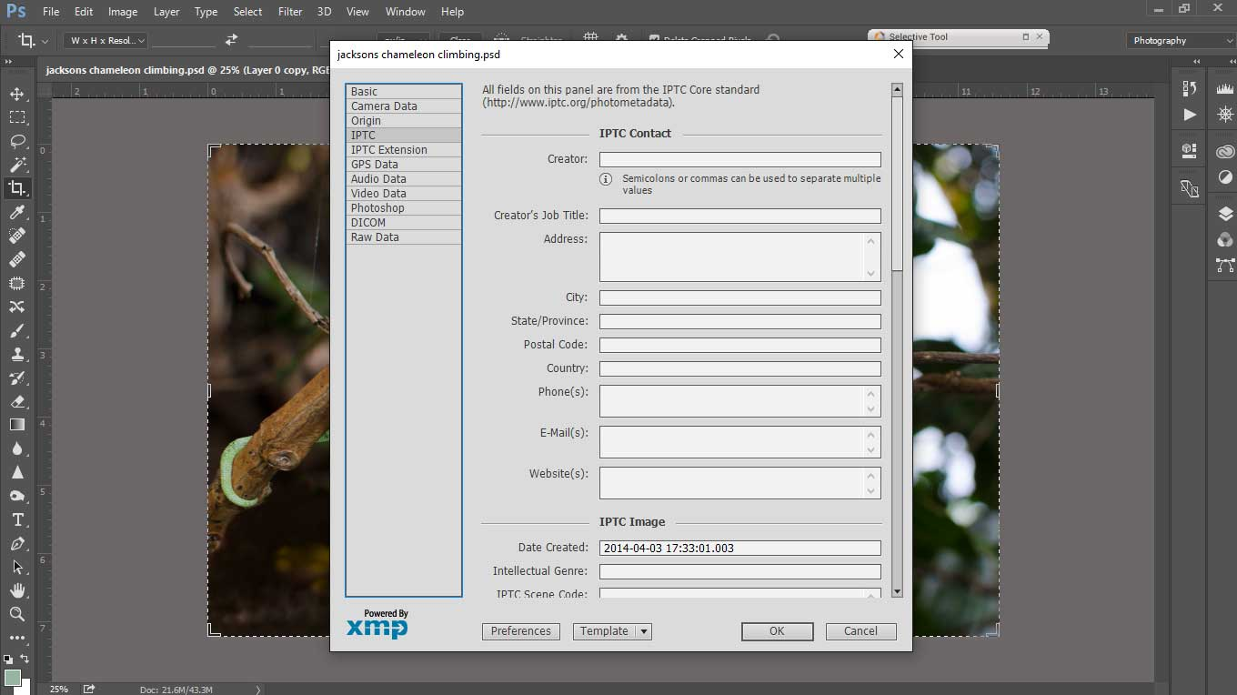 metadata entry form in adobe photoshop