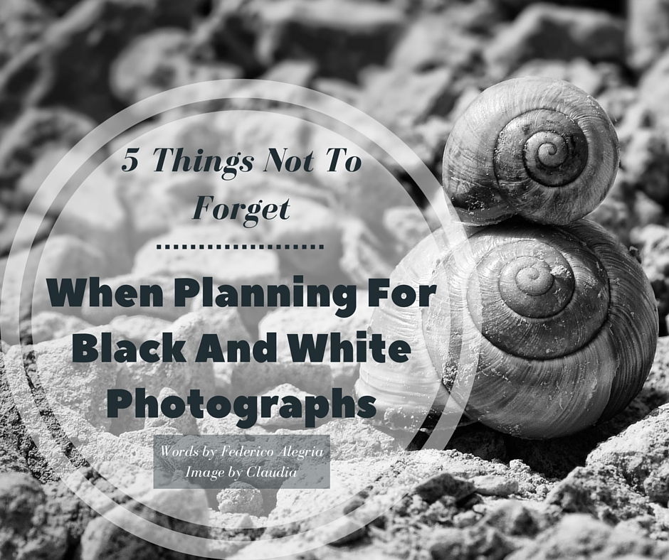 -5 Things Not To Forget When Planning For Black And White Photographs-