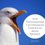 How Photographers Can Streamline Their Social Media Presence