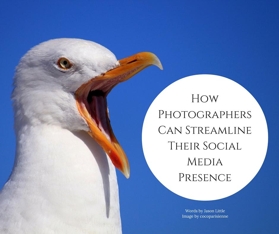 How Photographers Can Streamline Their Social Media Presence