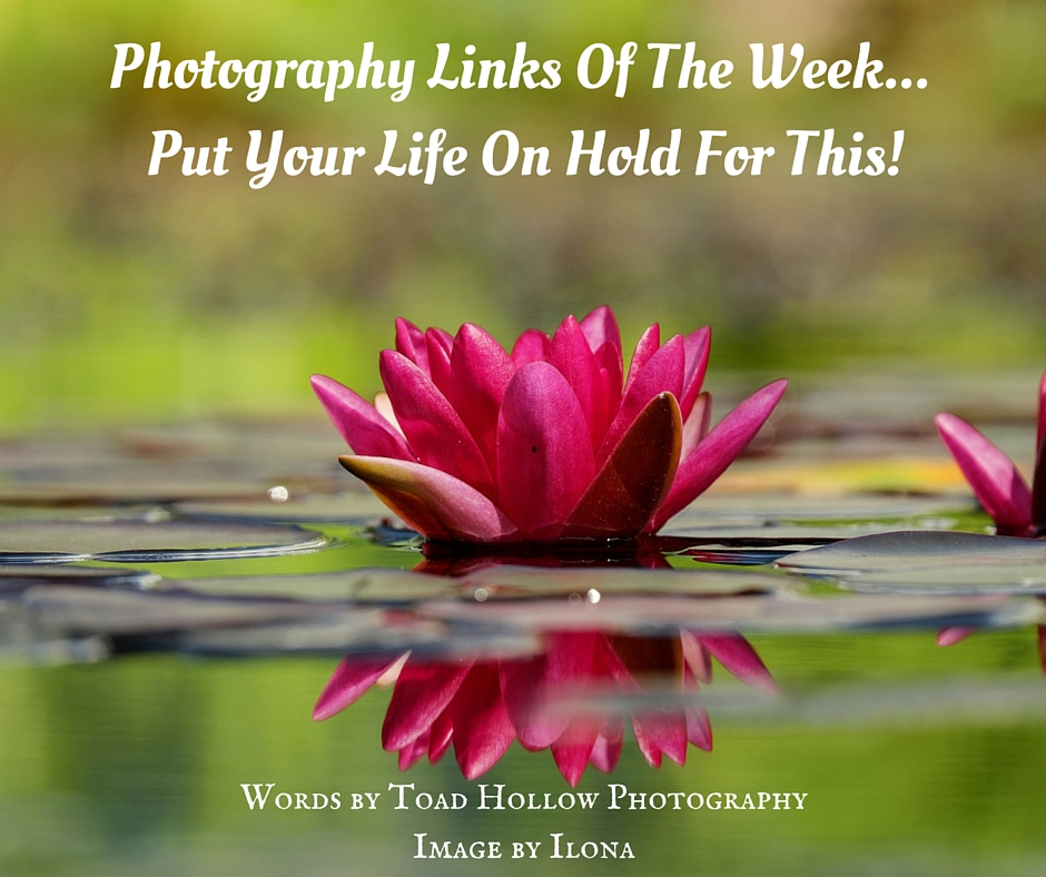 Photography Links Of This Week - Put Your Life On Hold
