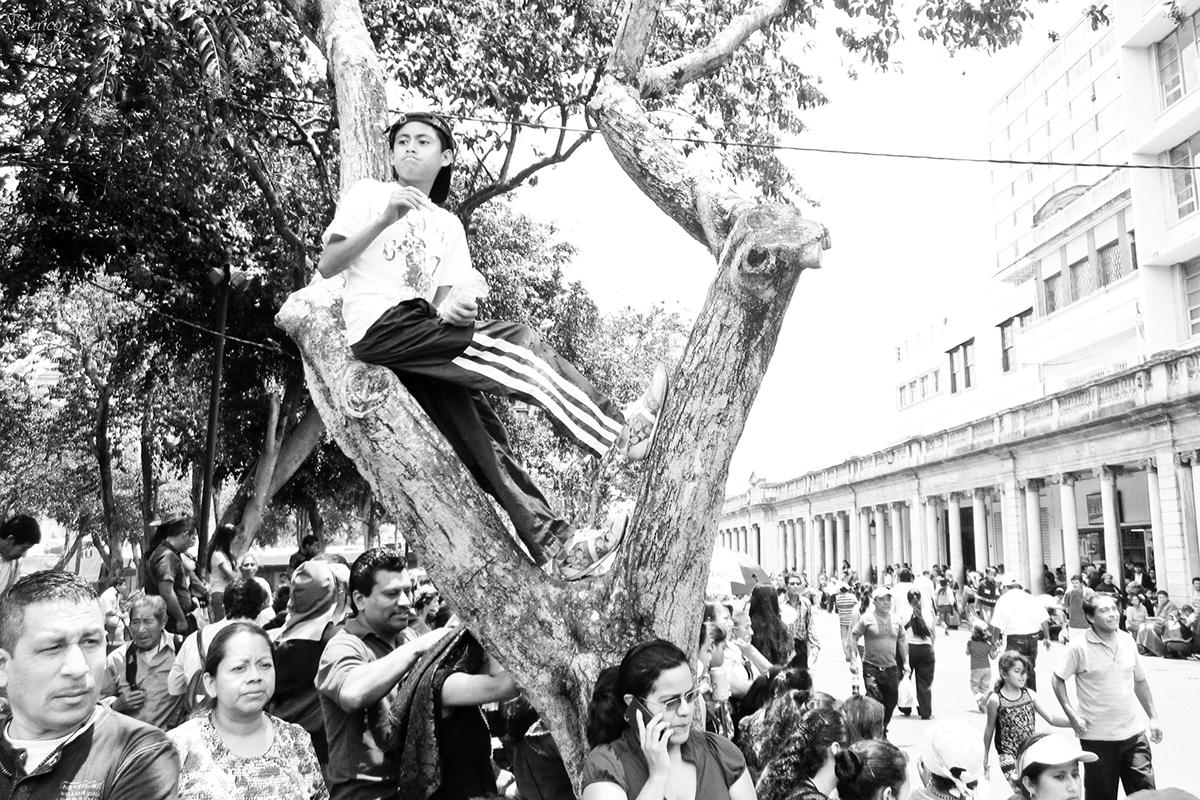 Image by Federico Alegría
