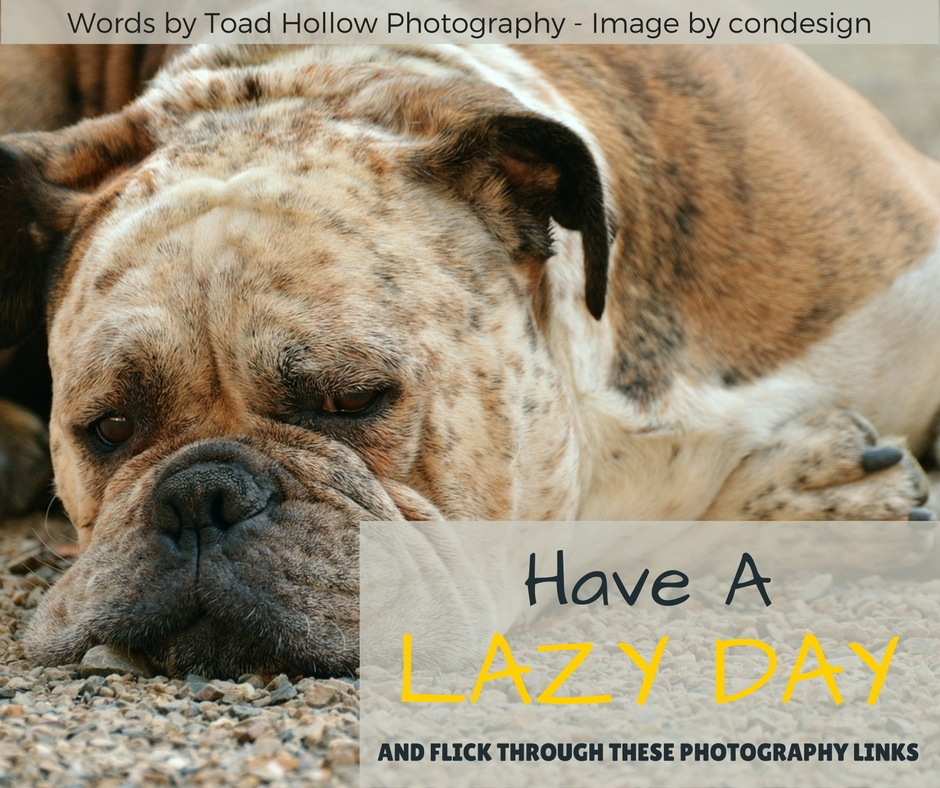 photography links