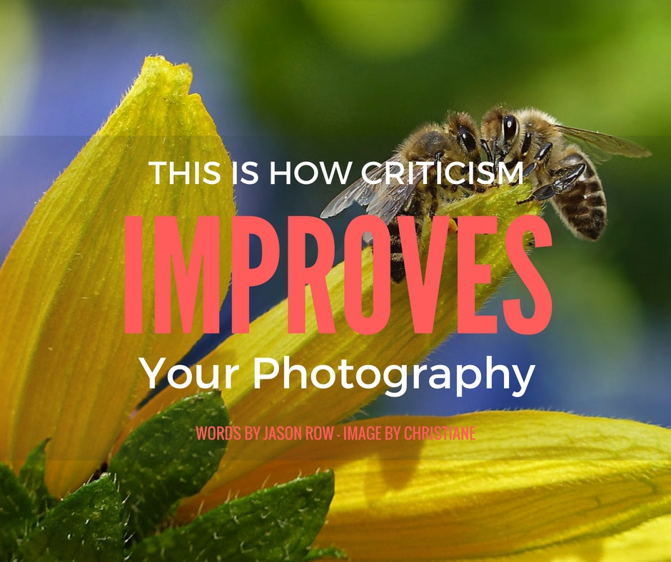 Criticism Improves Your Photography
