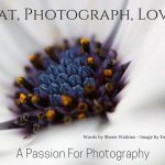 eat-photograph-love-a-passion-for-photography