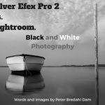 silver-efex-pro-2-vs-adobe-lightroom-black-and-white-photography