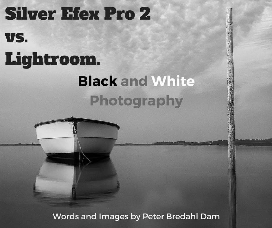 silver efex pro 2