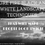 Black And White Landscape Techniques