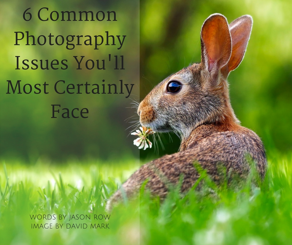 common photography issues