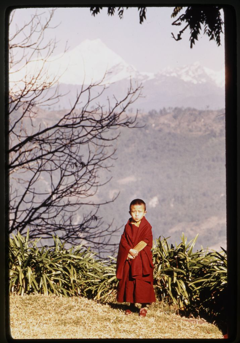Jamyang Khyentse, full-length portrait, standing, mountains in background, Sikkim