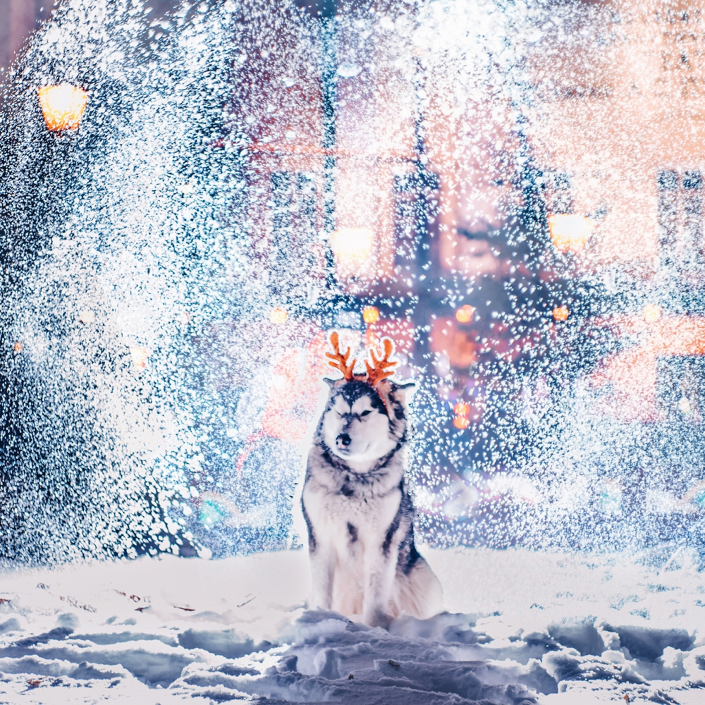 kristina-makeeva-moscow-fairytale-winter_0017