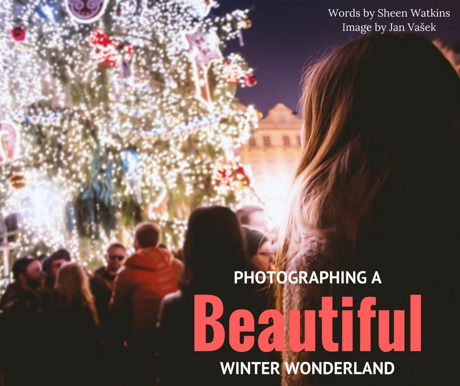winter holiday photography