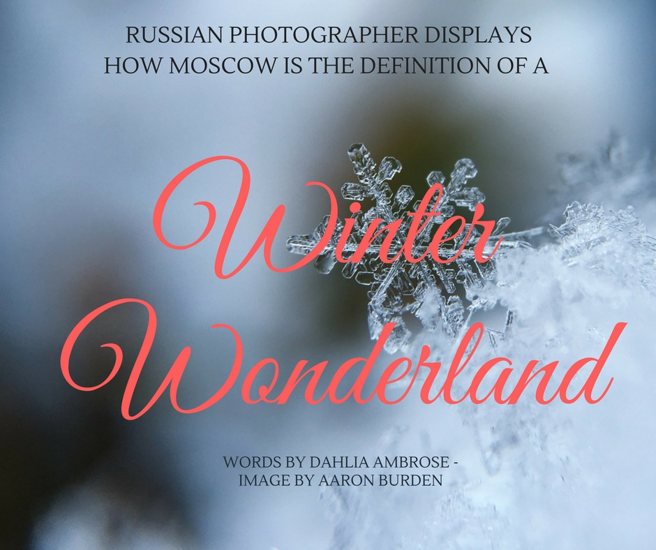christmas winter photography