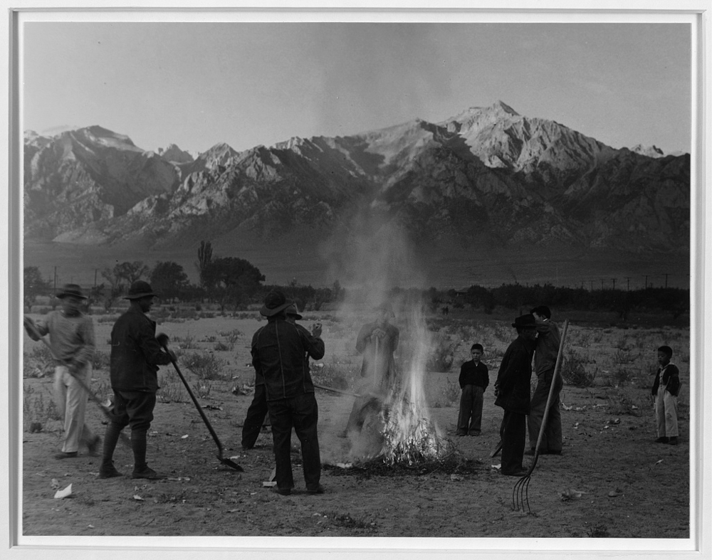 Burning leaves, autumn dawn, Manzanar Relocation Center, California