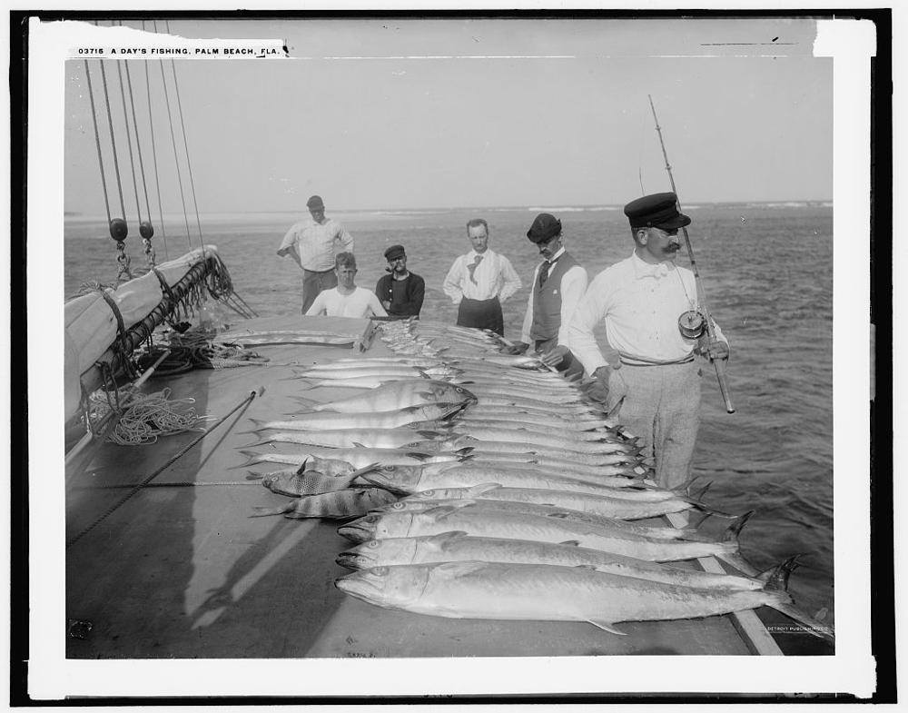 Day's fishing, Palm Beach, Fla