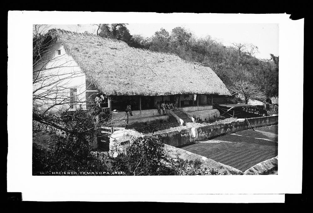 Hacienda Temasopa [sic]