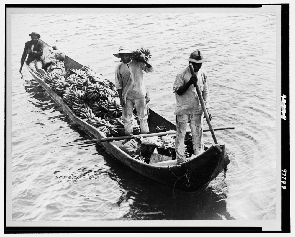 Three men in a boat transporting bananas to the city markets in Panama